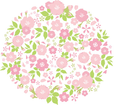 Spring flower cherry blossoms Sakura bouquet frame Flower bouquet background