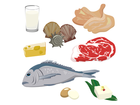 Food ingredients with a lot of protein