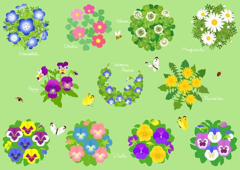 Spring flower material 1
