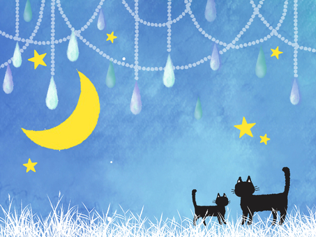 Cat and moon night