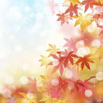 Maple background material