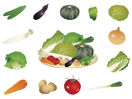 Vegetable illustration set