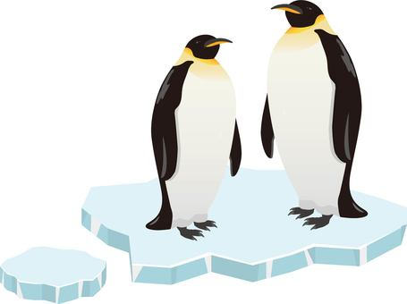 Emperor Penguin Ice