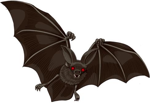 Horror bat