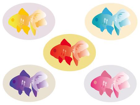 五颜六色的金鱼图标2