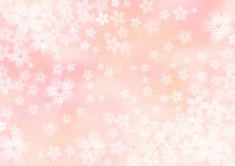 Sakura _ Pink _ Japanese paper background 1771
