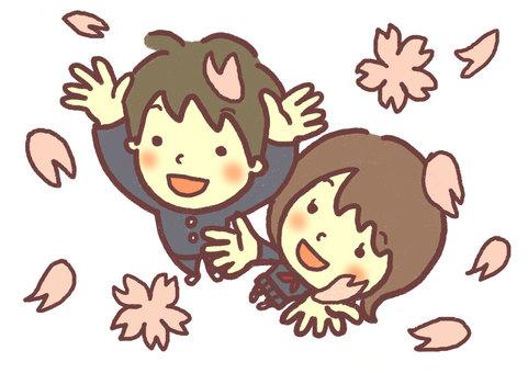 벚꽃 눈보라