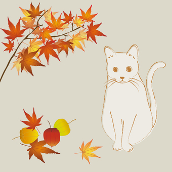 Autumn leaves and cats in autumn
