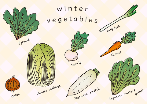 【Vegetables】 Winter vegetables summary with color