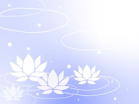 Water lily background material 03