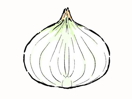 Onion cut onion