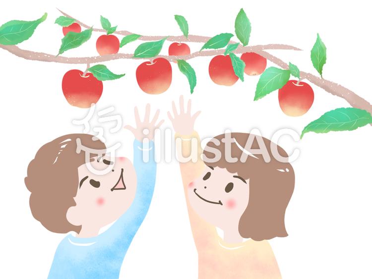 リンゴ 手を伸ばす子供イラスト No 1260446無料イラストなら