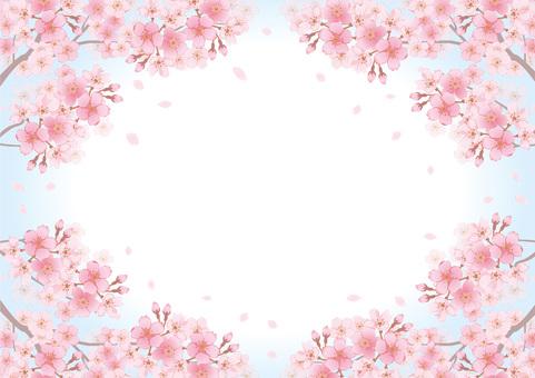 Cherry frame 24