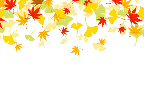 Autumn leaves and ginkgo background material 1