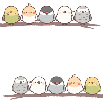 Birds frame