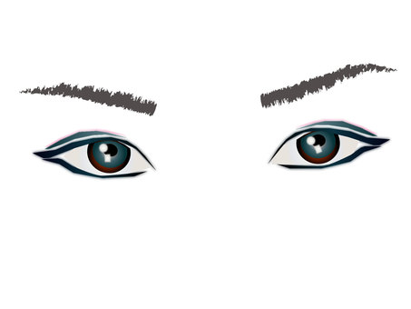 Eye collection 55