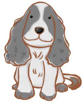 Dog _ Cavalier