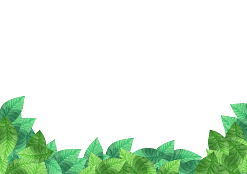 水彩 葉 下フレーム