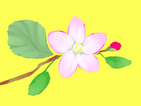 Oil Painting Wind Apples Flower