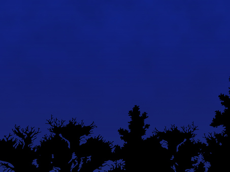 Night sky (with wooden silhouette)