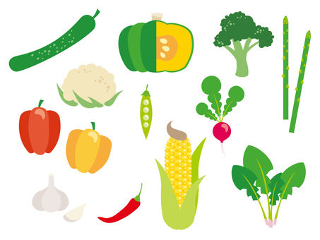 Various vegetables _ 02