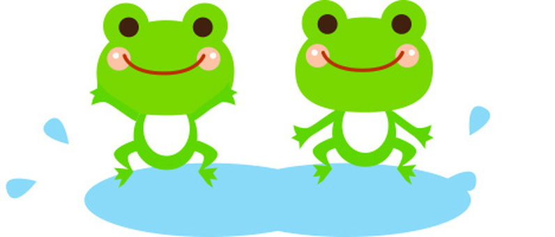 Frog Rainy season