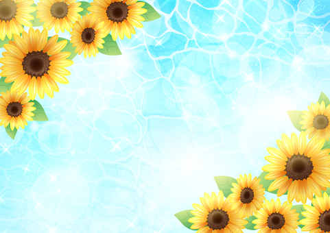Sunflower and sea 2