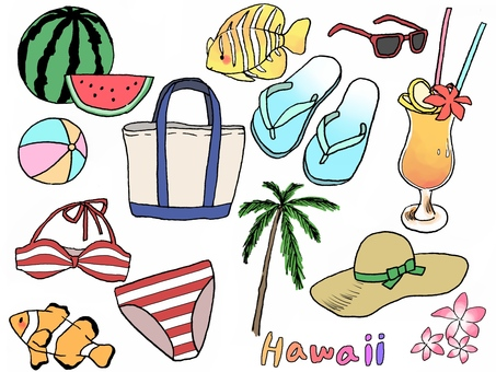 Hawaii and the beach