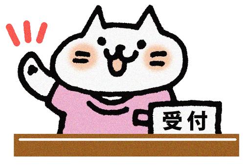 Reception cat