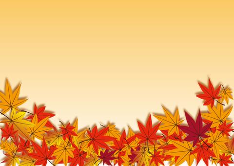 Fallen Leaves Back 02