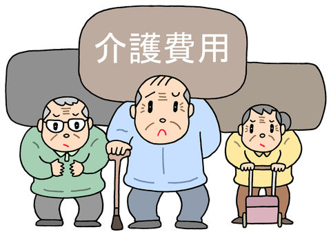 Elderly person, care cost problem