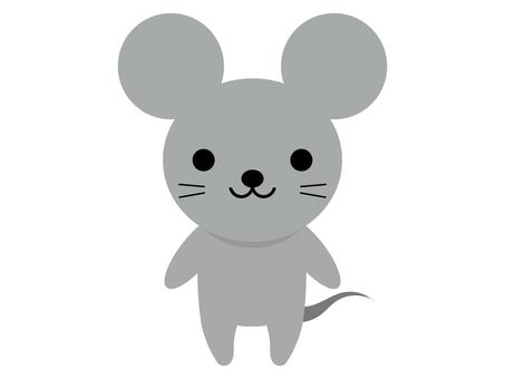 쥐 동물 서 포즈