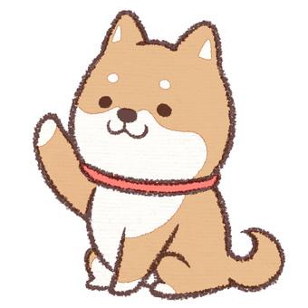 Fainted canine
