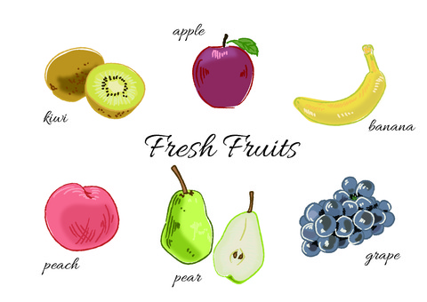 Hand drawn touch fruit illustration