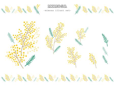 Illustration set of flowers (mimosa)