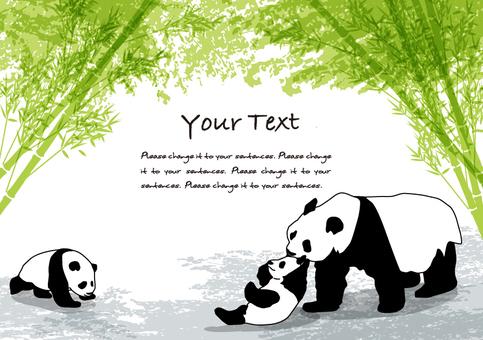 대나무 그늘과 팬더 메시지 카드 B