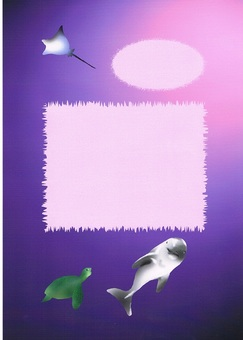Dolphin & Turtle / Manta 1