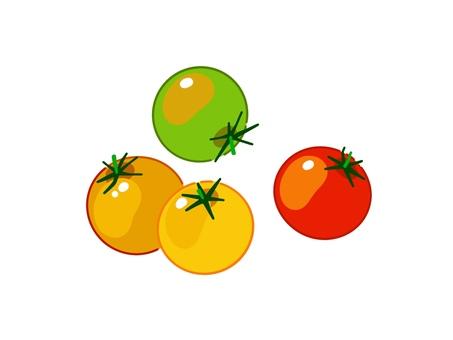 화려한 쁘띠 토마토