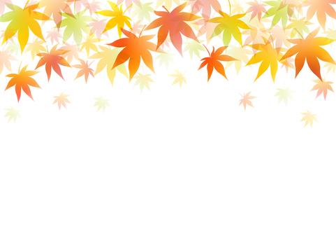 Autumn 209
