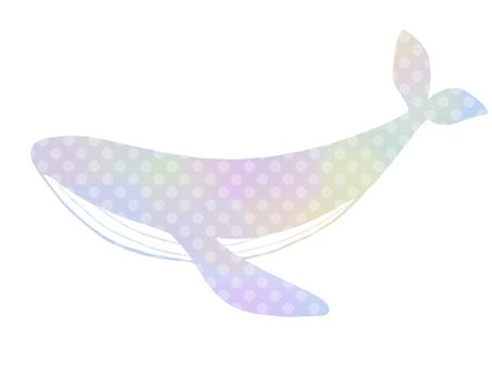 Whale (dot)