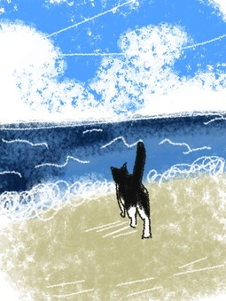 Sea and cat