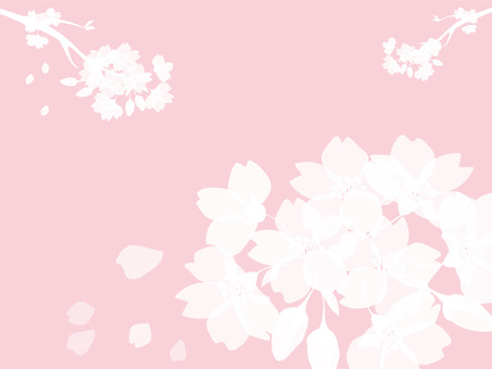 Sakura silhouette background 4