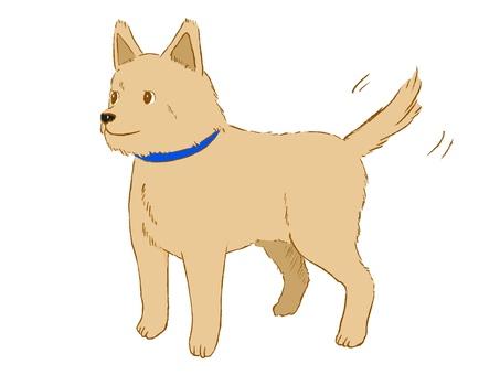 Dog-kun.