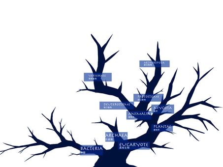 系統發育樹(僅限字母,分支)