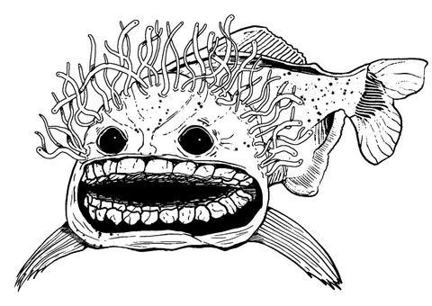 漫画イラスト 怖い魚