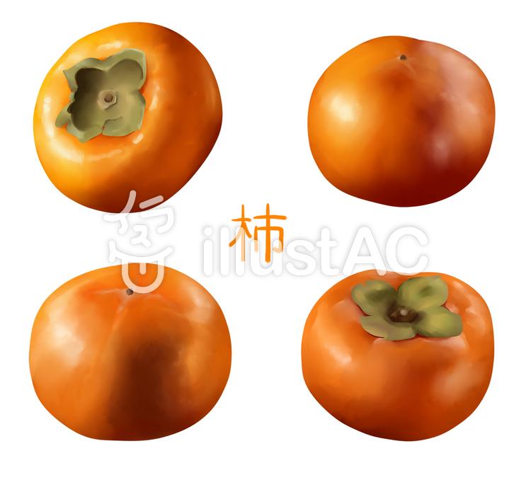 【フリーイラスト素材】柿の実セット