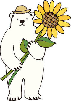 Shirokuma san (sunflower)