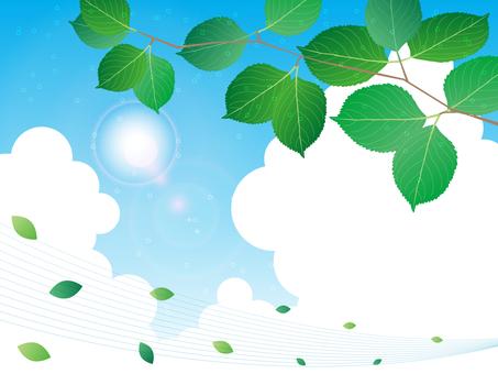 녹색과 여름 하늘