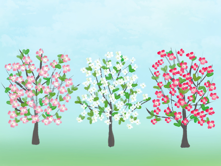 Cute tree of flower tree