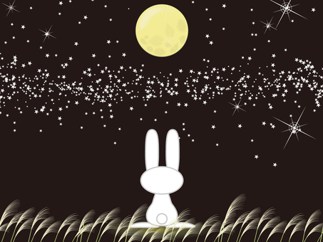 The moon and the rabbit
